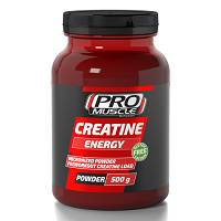 PROMUSCLE CREATINE ENERGY 500G